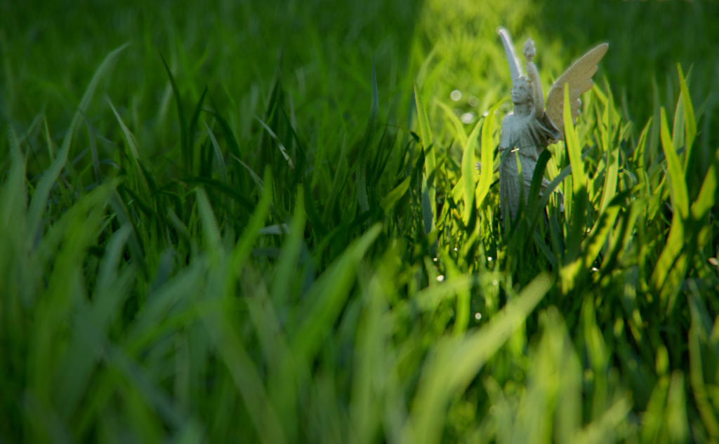 angel in grass - Portfolio work - Evermotion
