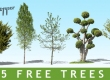5 cut out trees