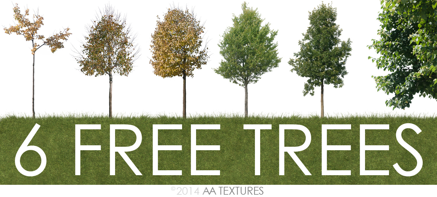 6 free cut trees by AA Textures download - Evermotion