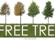 6 free cut trees by AA Textures