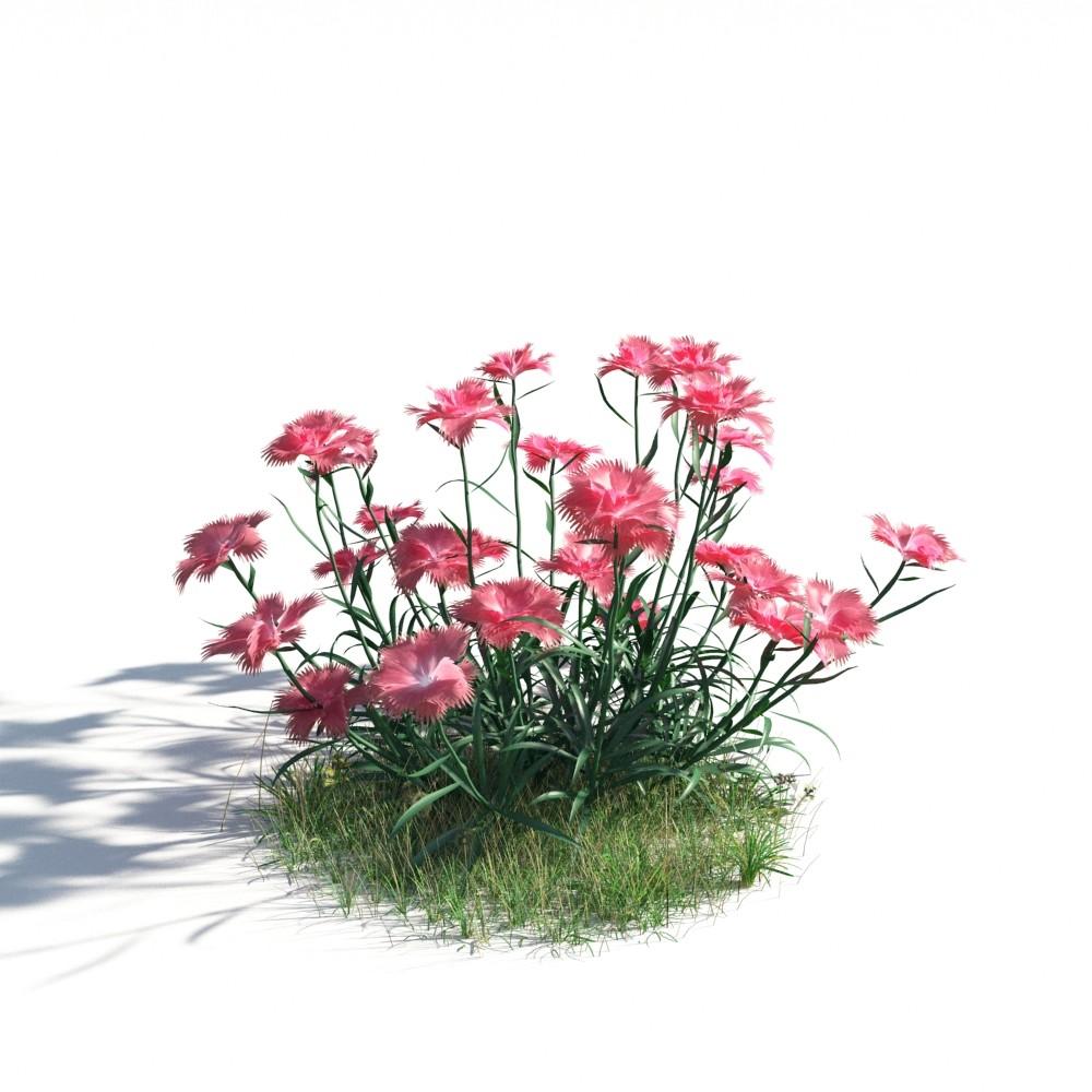 plant 14 AM183 Archmodels