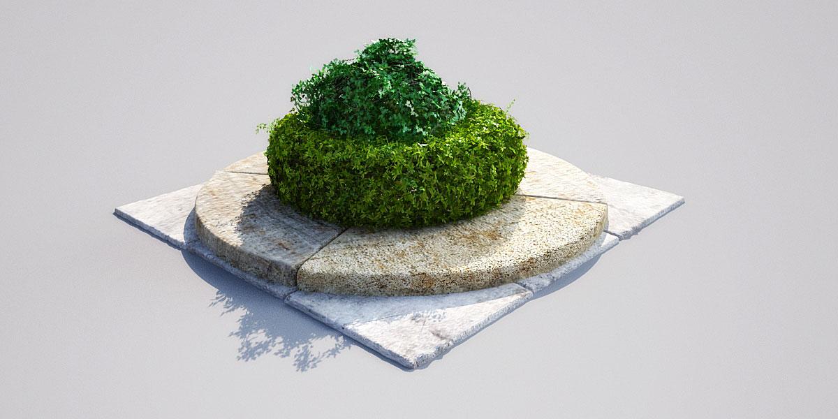 hedge 16_05 AM148