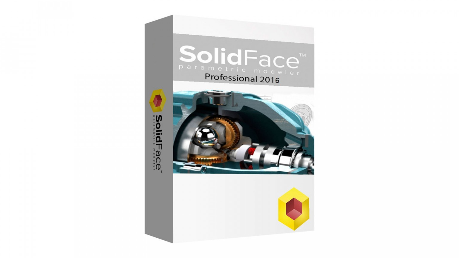 SolidFace Professional Monthly License