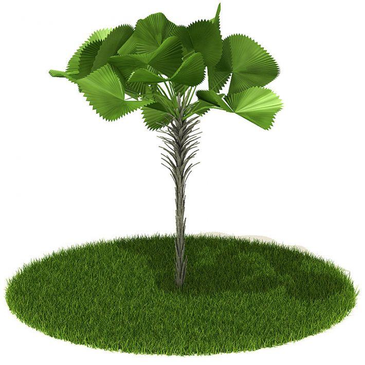 Plant 37 AM42 Archmodels