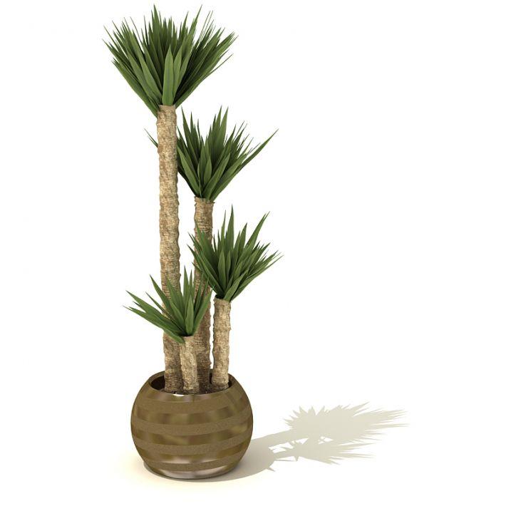 plant 25 AM41 Archmodels