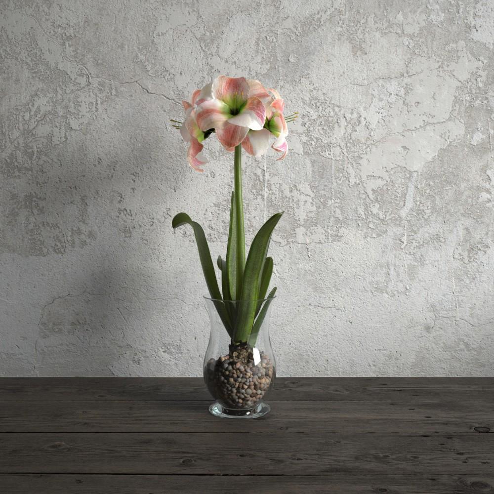 plant 38 AM173 Archmodels