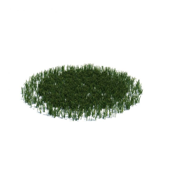 simple grass large 15 AM126 Archmodels