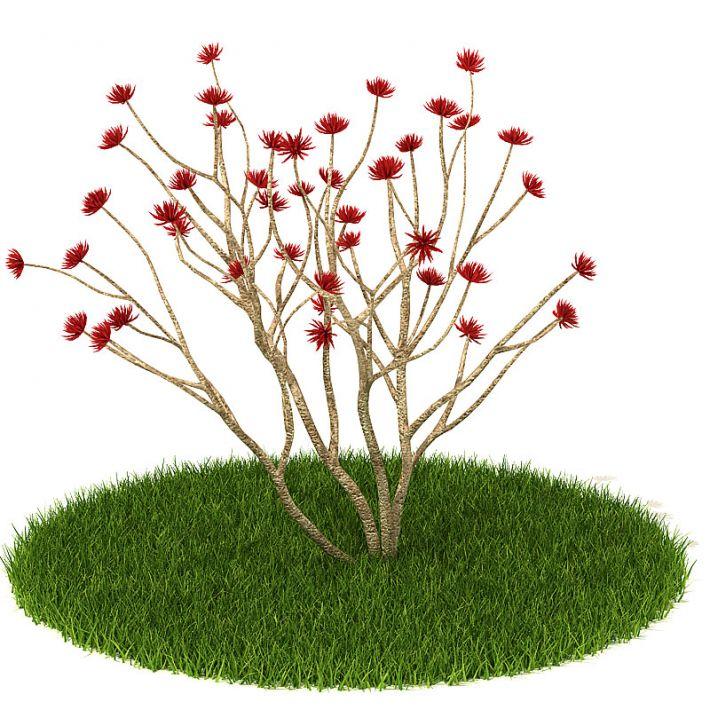 Plant 39 AM42 Archmodels