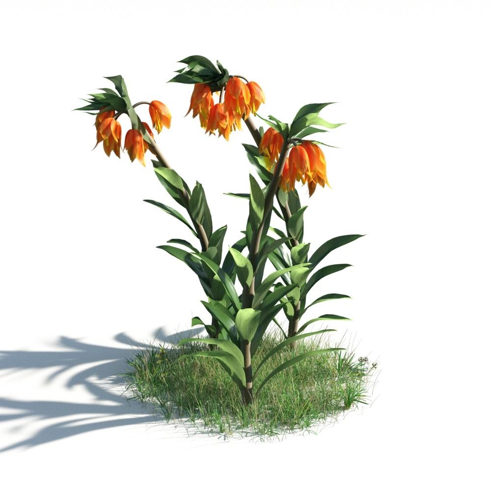 plant 22 AM183 Archmodels