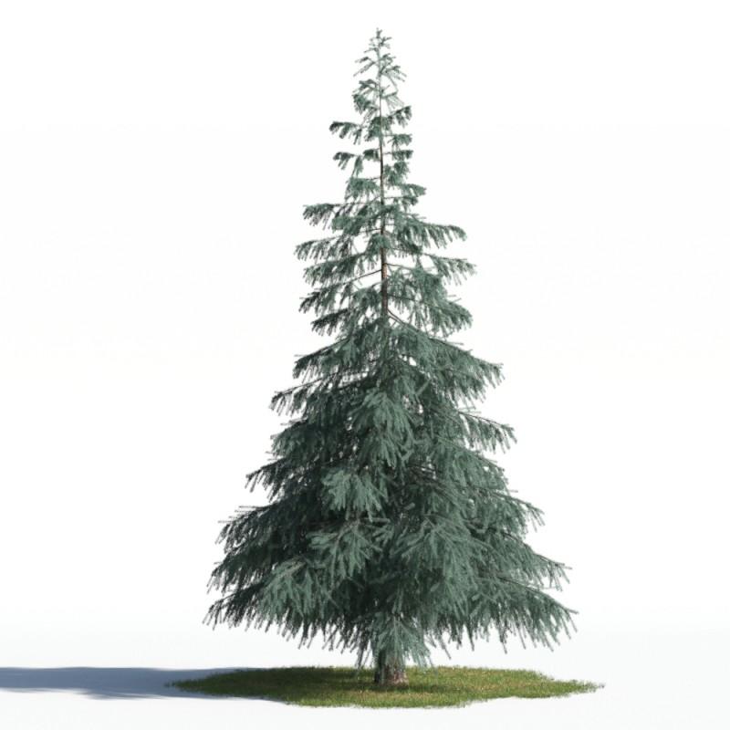 tree 88 AMC1