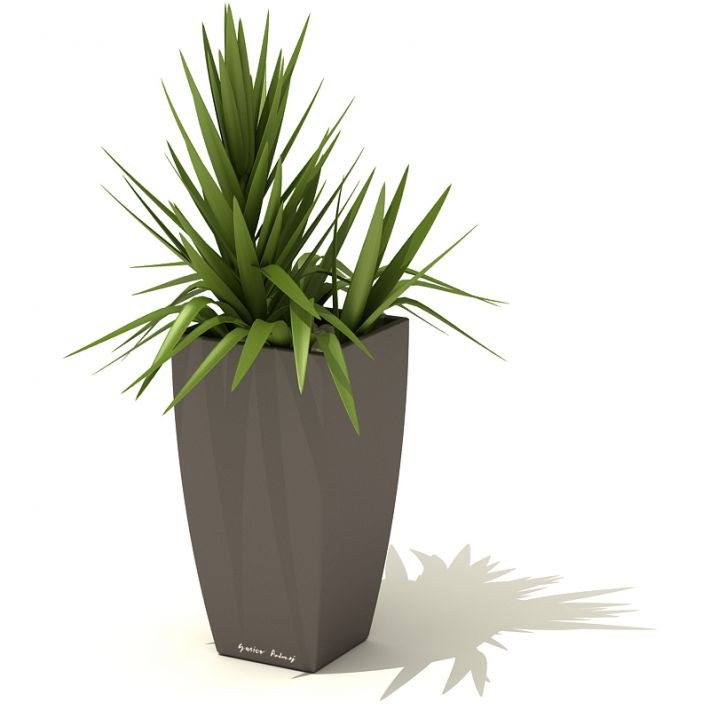 plant 49 AM41 Archmodels
