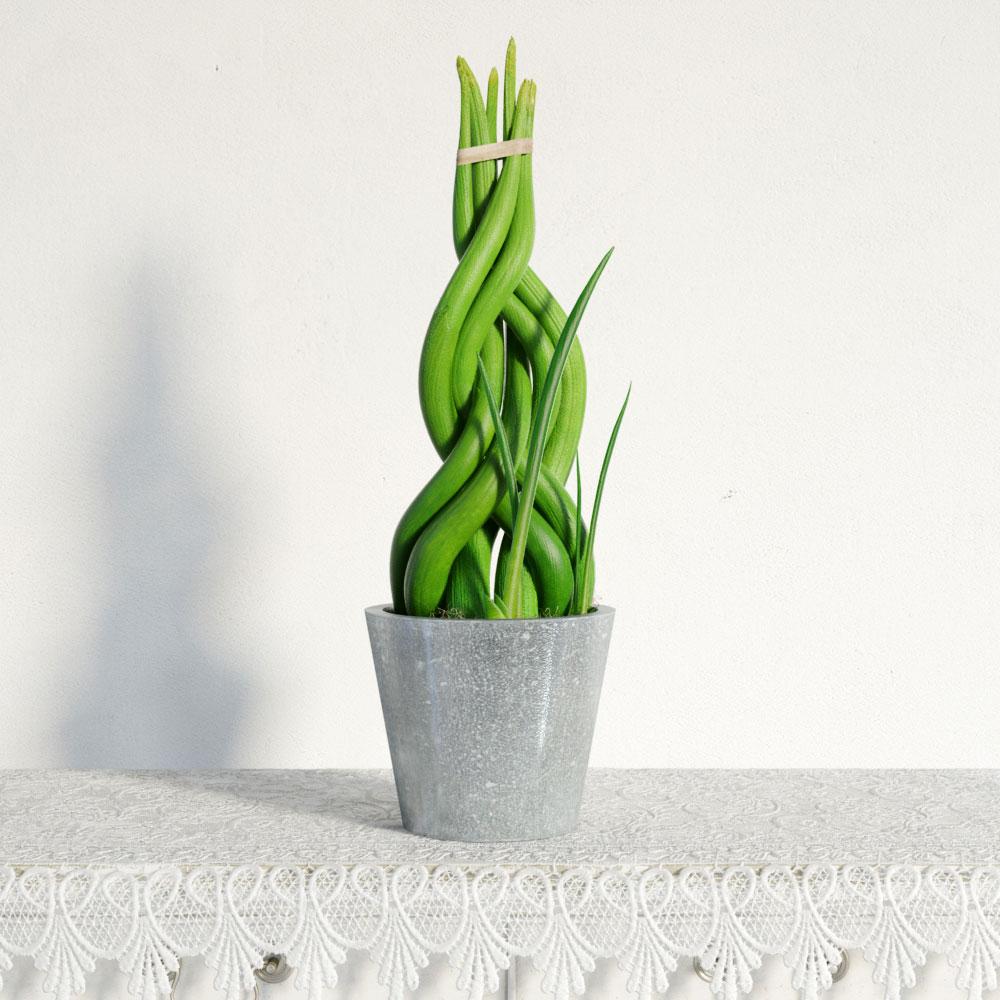 plant 4 AM141 Archmodels