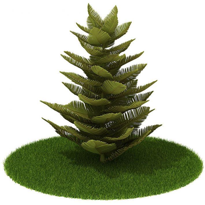 Plant 13 AM42