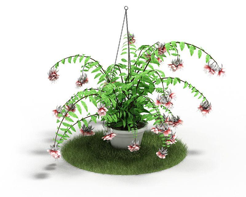 Plant 52 AM04 C4D
