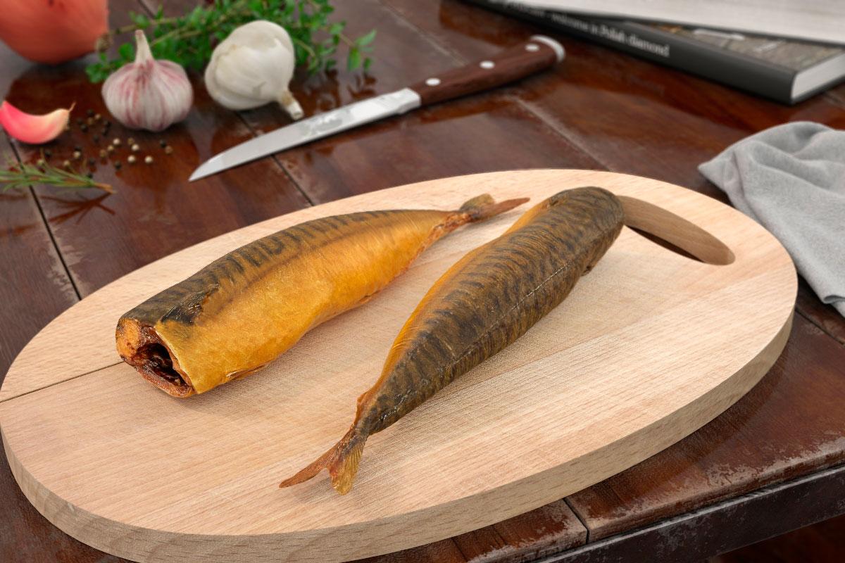 fish 52 AM151
