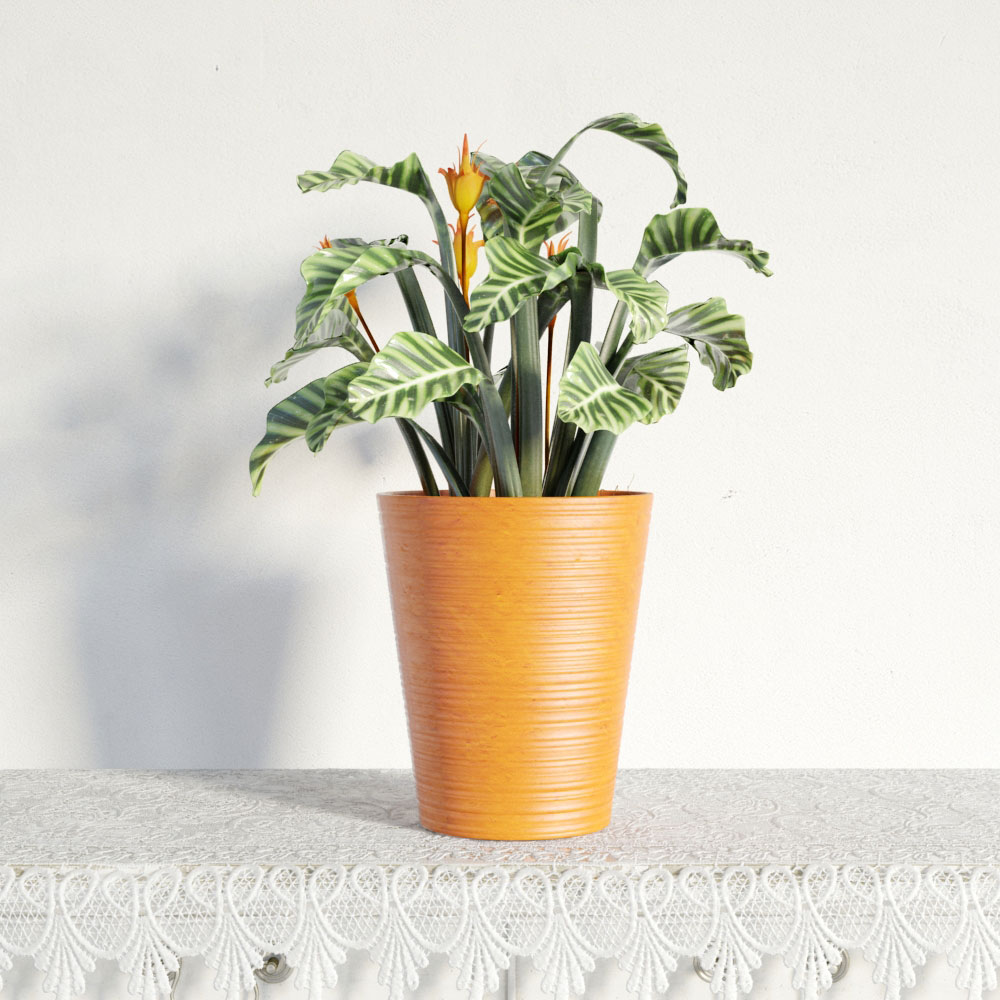 plant 7 AM141 Archmodels