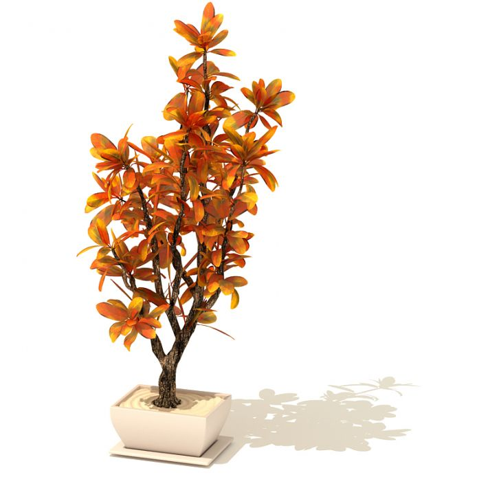 plant 34 AM41 Archmodels