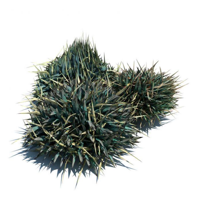 Decorative grass 086 am124