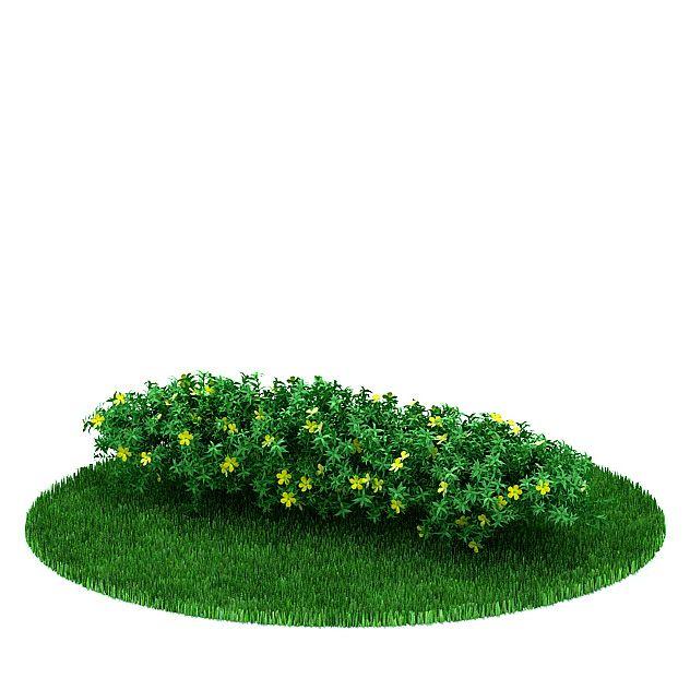 Plant 36 AM31 Archmodels