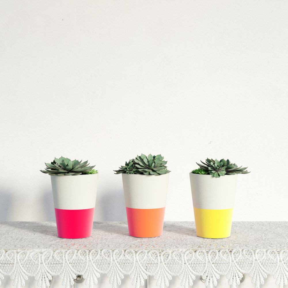 plant 29 AM141 Archmodels