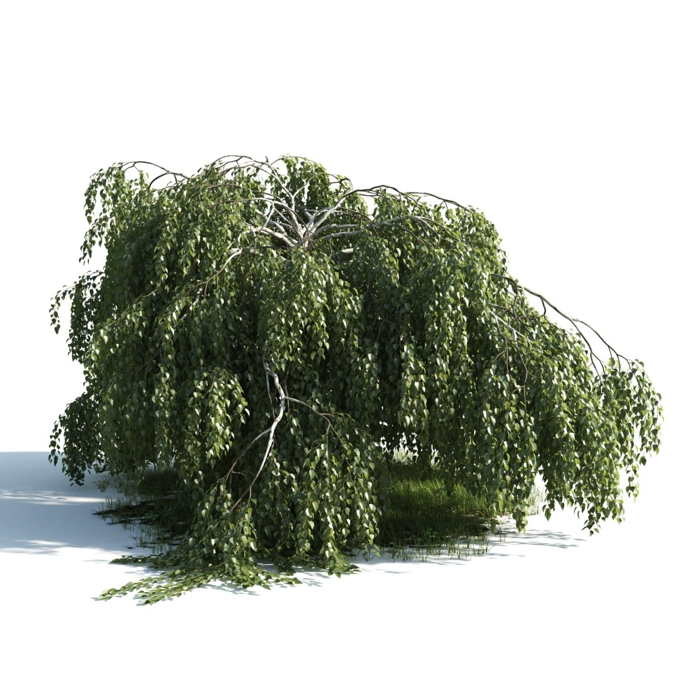 Tree 7 AM176 Archmodels