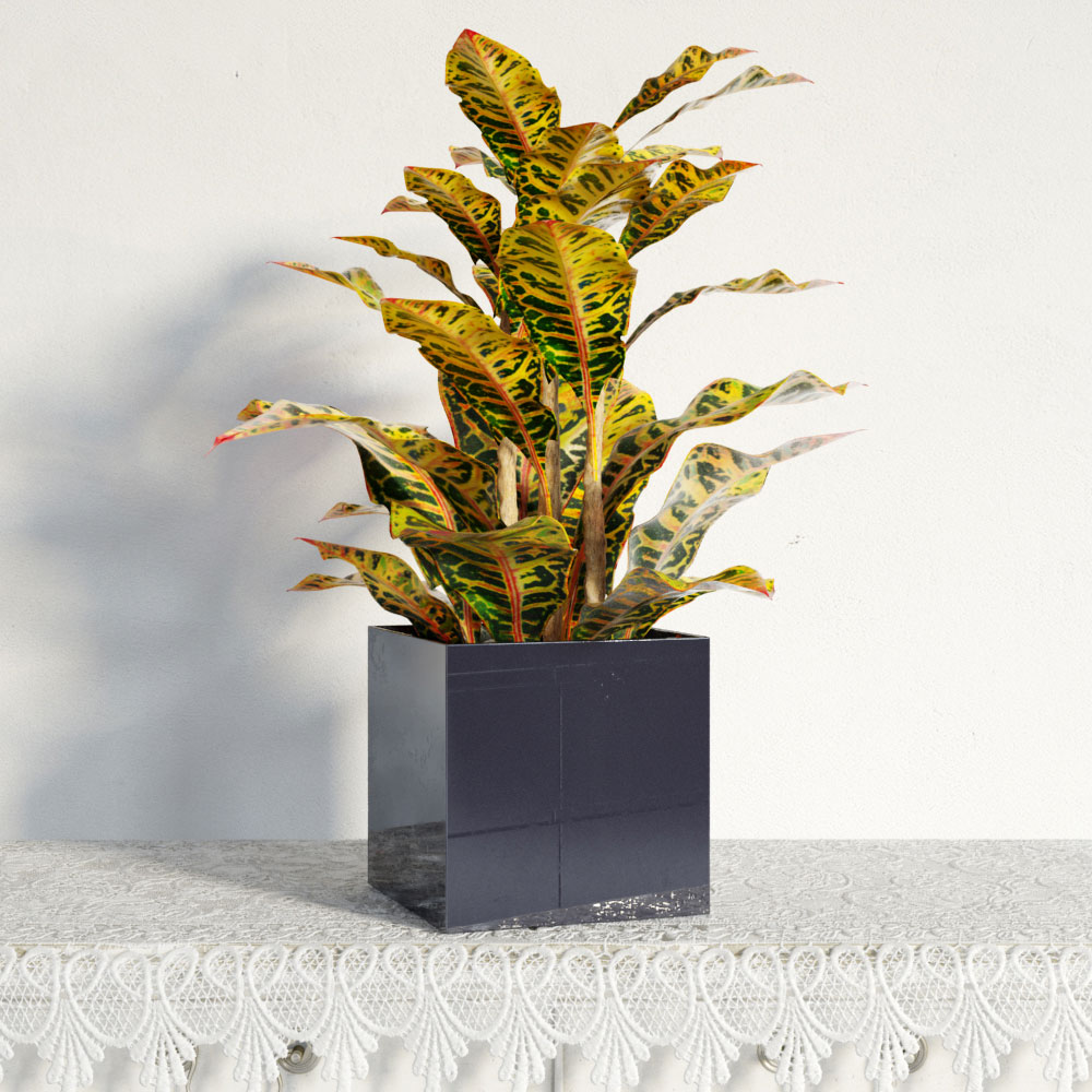 plant 10 AM141 Archmodels