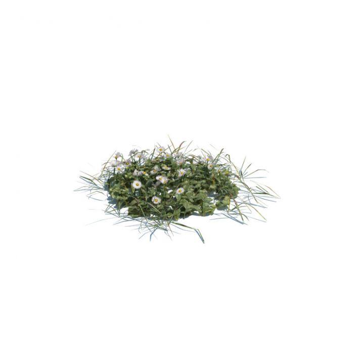 simple grass medium 8 AM126 Archmodels