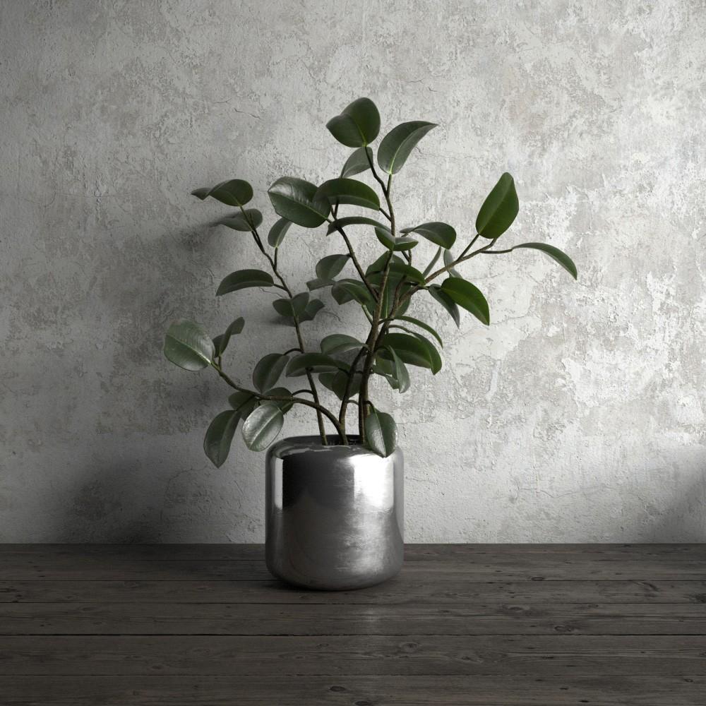 plant 51 AM173 Archmodels