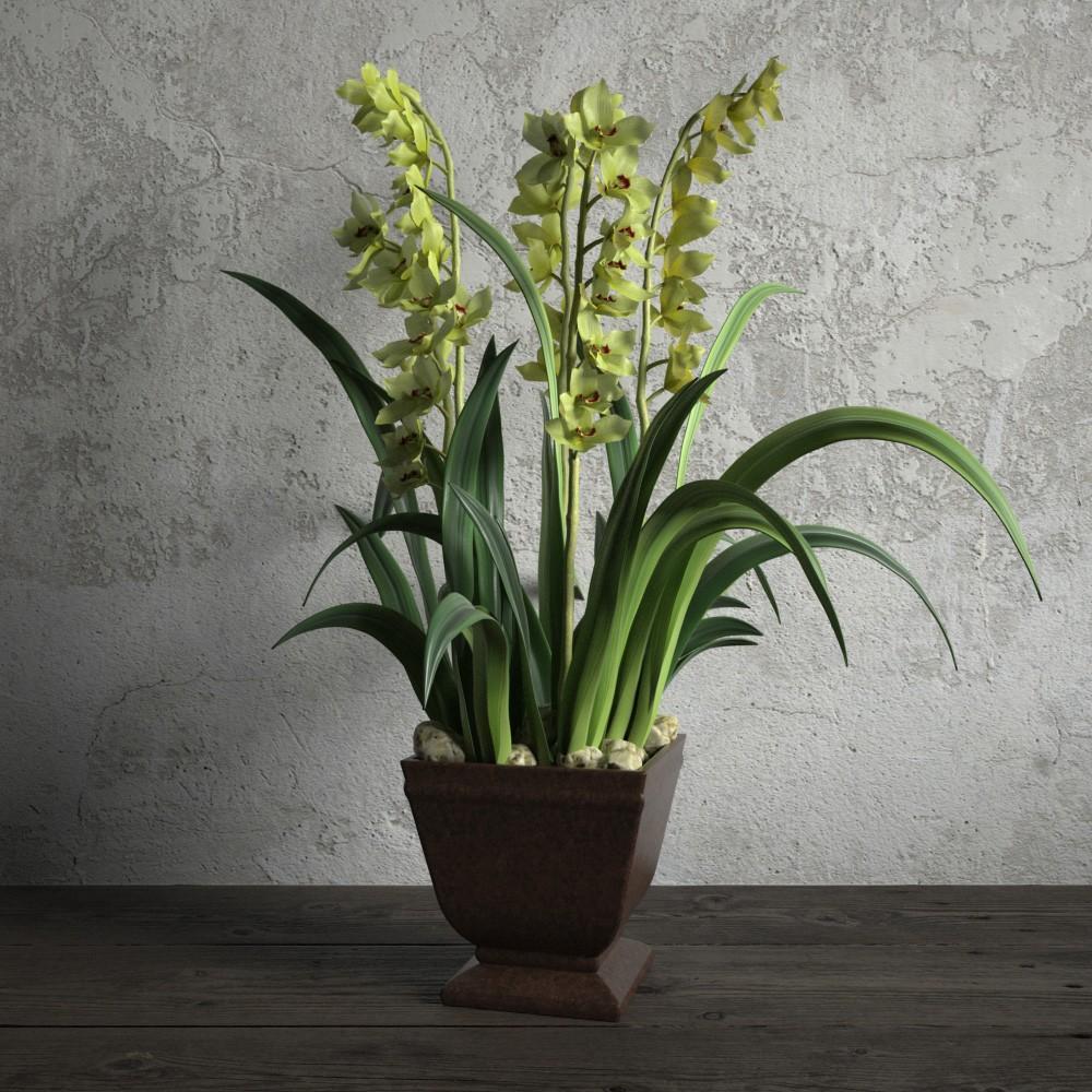 plant 53 AM173 Archmodels