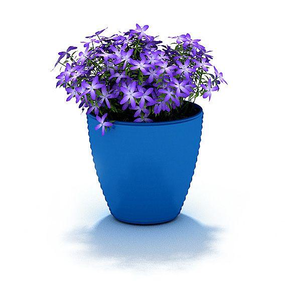Plant 64 AM31 Archmodels