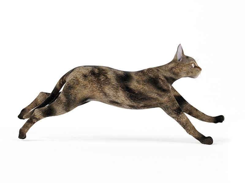 cat48 AM83 Archmodels