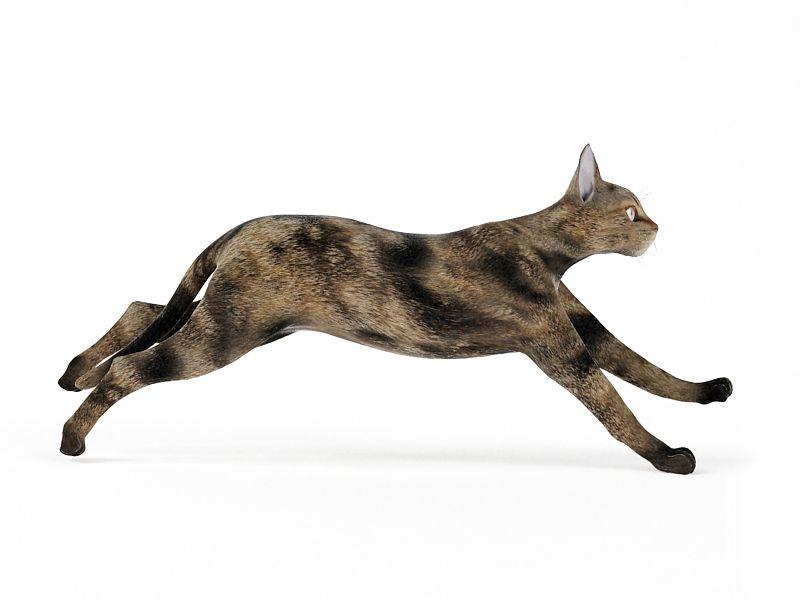 cat48 am83
