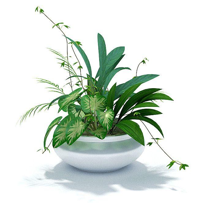 Plant 58 AM31 Archmodels