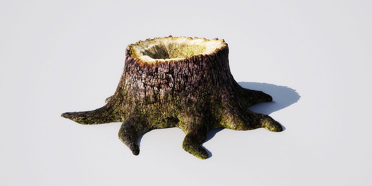 stump 14 1 AM148 Archmodels