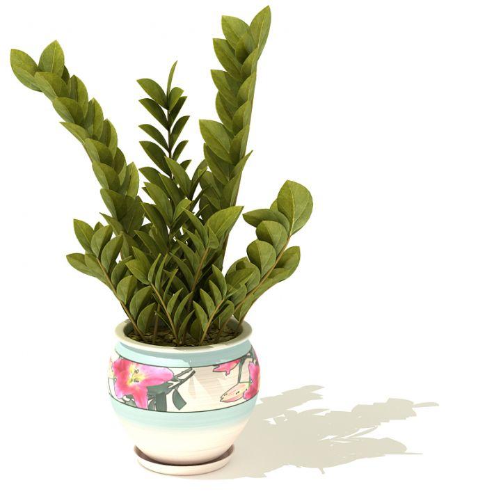 plant 38 AM41 Archmodels