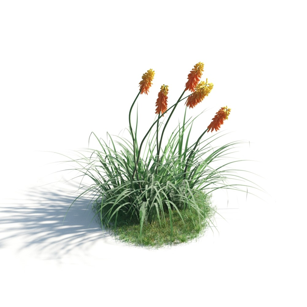plant 40 AM183 Archmodels