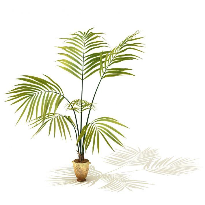 plant 2 AM41 Archmodels