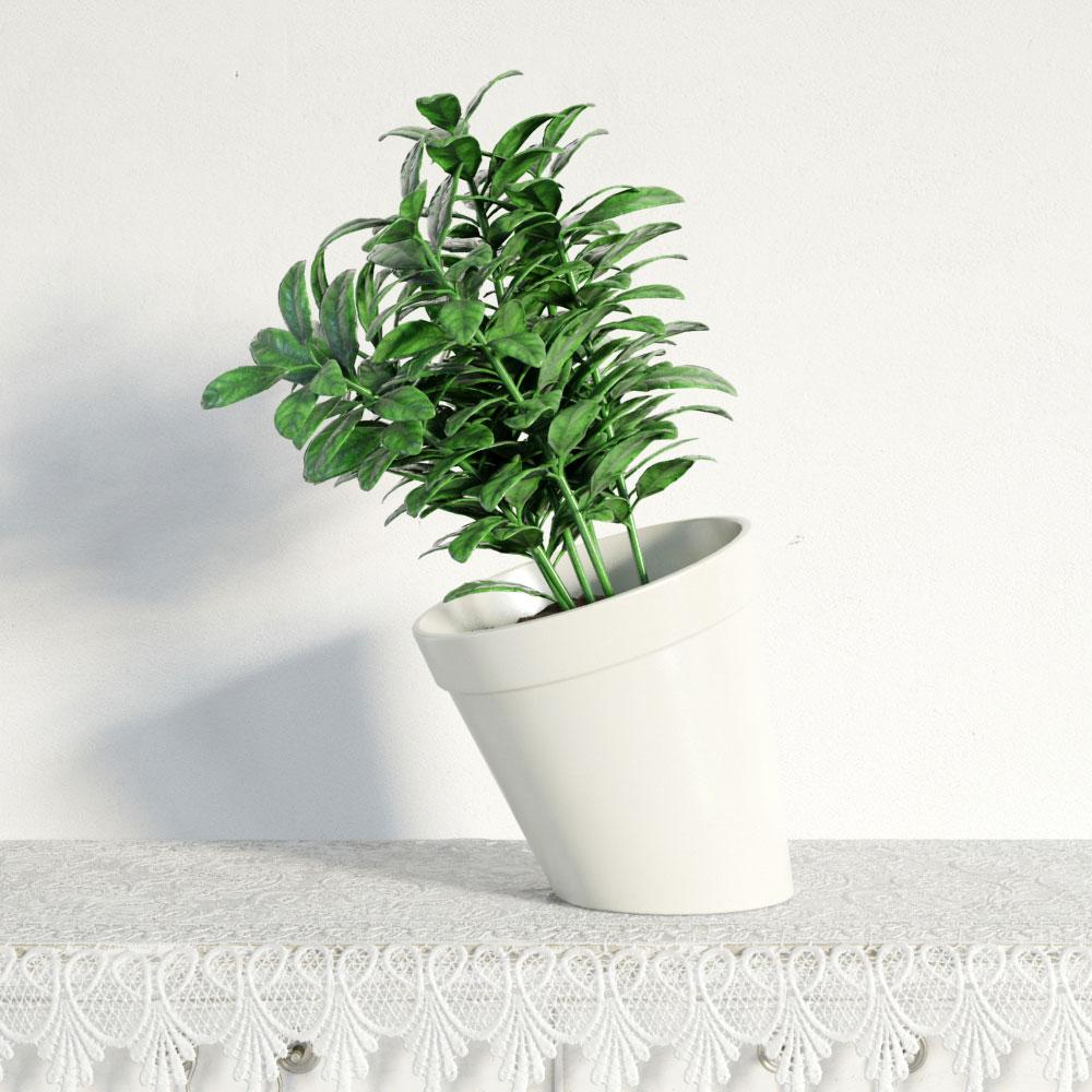 plant 9 AM141 Archmodels
