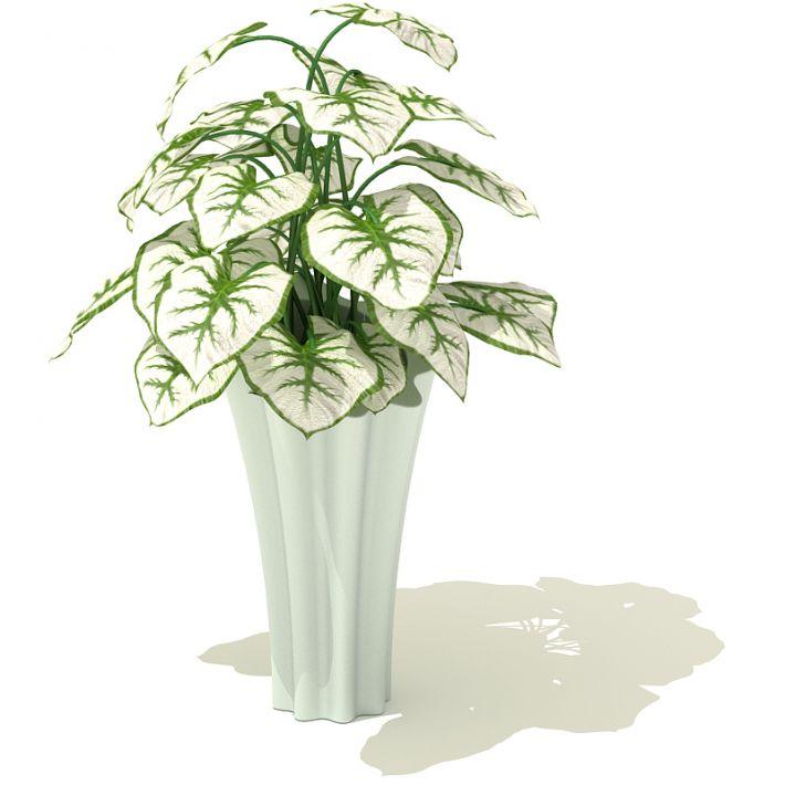 plant 58 AM41 Archmodels