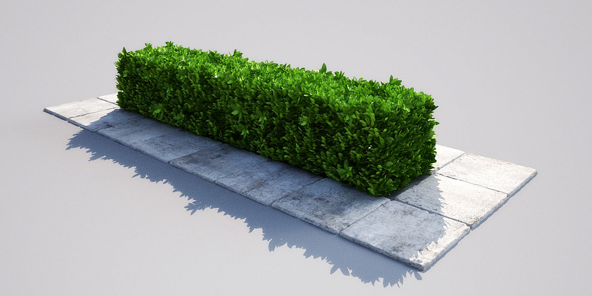 hedge 16 1 AM148 Archmodels