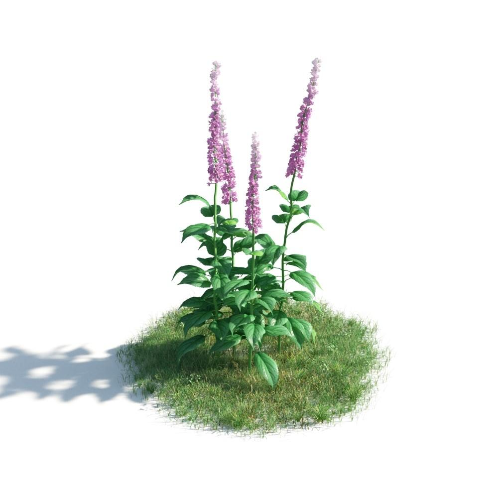 plant 30 AM183 Archmodels