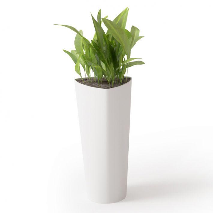 Plant 32 Archmodels vol. 66