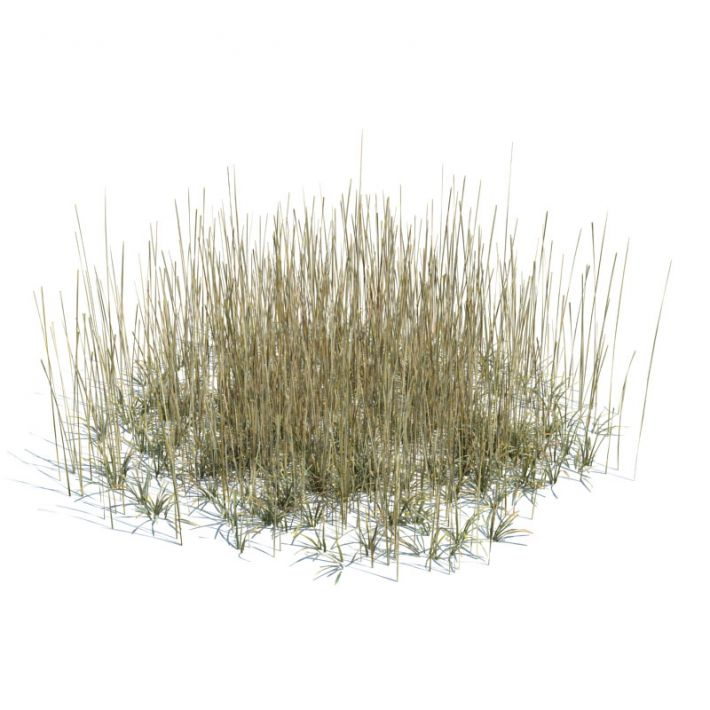 simple grass large 141 AM124 Archmodels