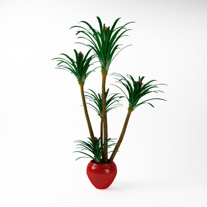Plant 35 AM75 Archmodels