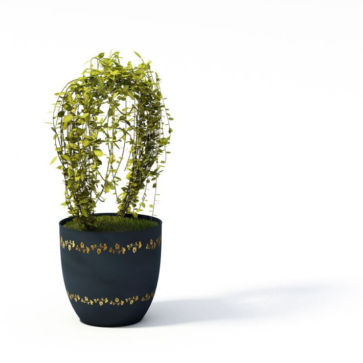 Plant 32 AM24 Archmodels
