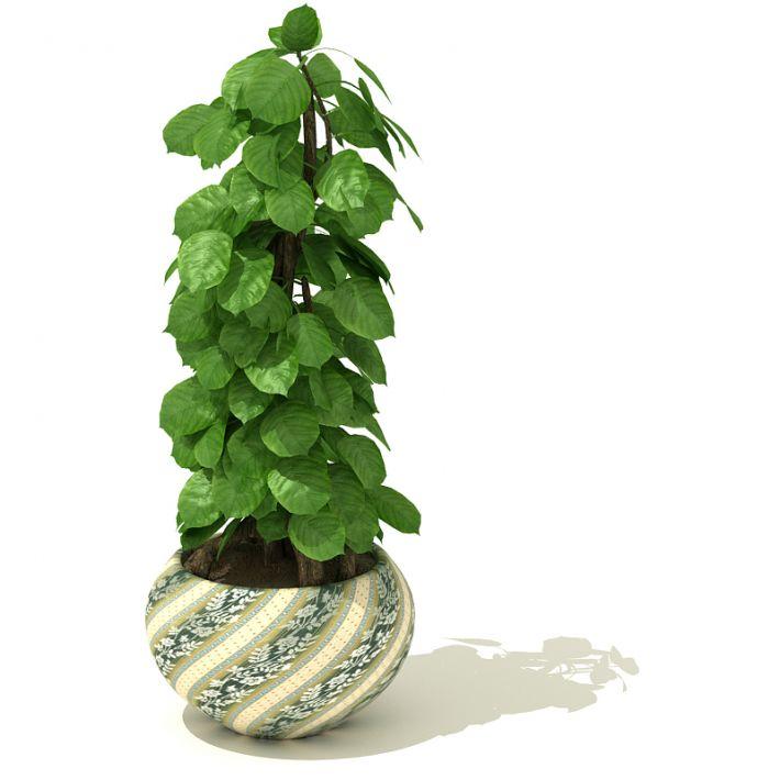 plant 36 AM41 Archmodels