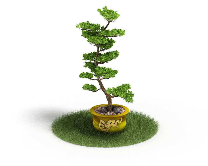 Plant 46 AM4 for Cinema4D Archmodels