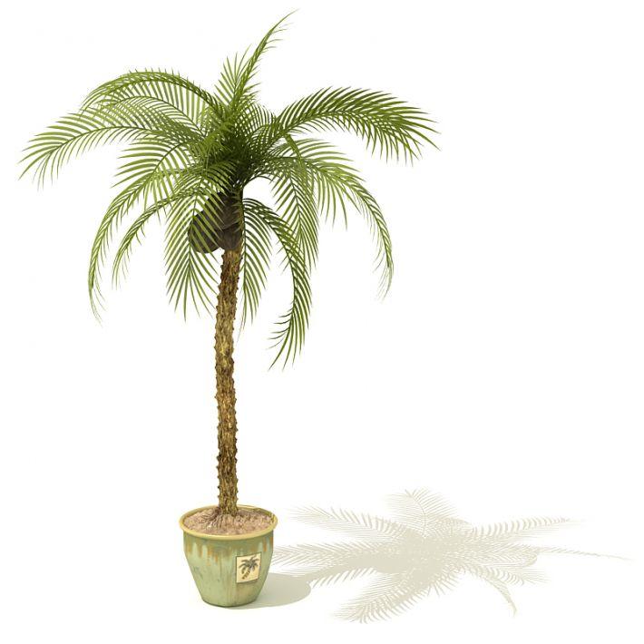 plant 15 AM41 Archmodels