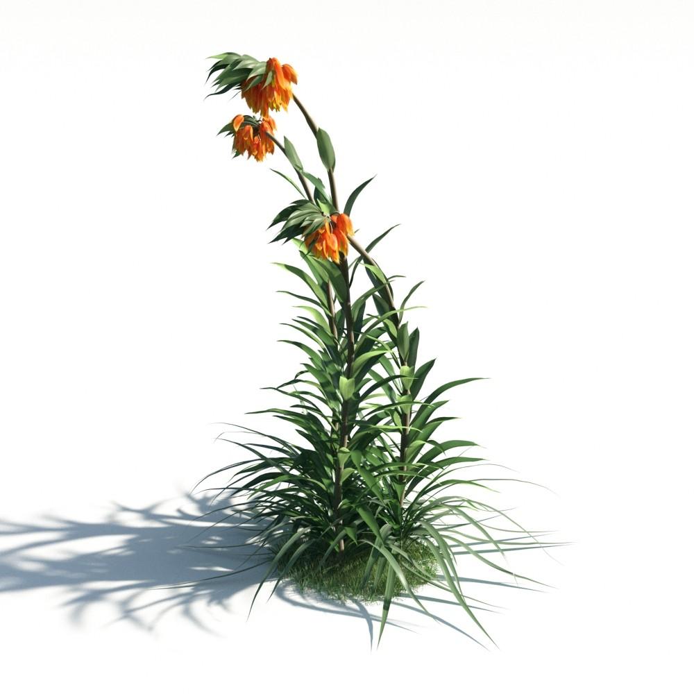 plant 21 AM183 Archmodels