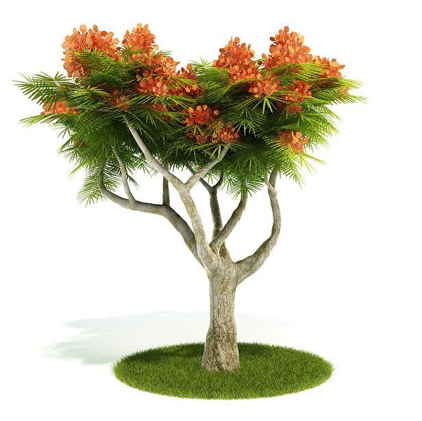 Plant 17 AM52 Archmodels